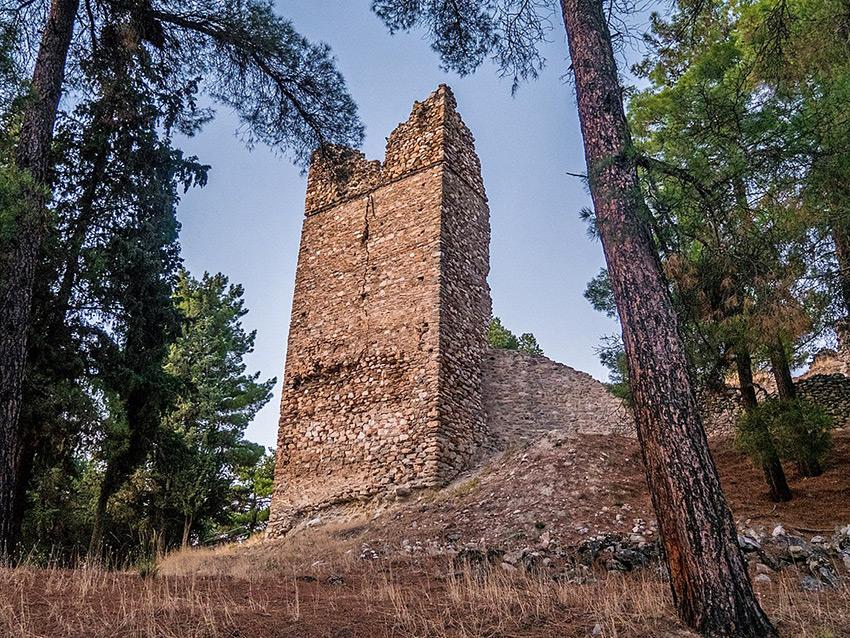 Κάστρο Σερβίών
