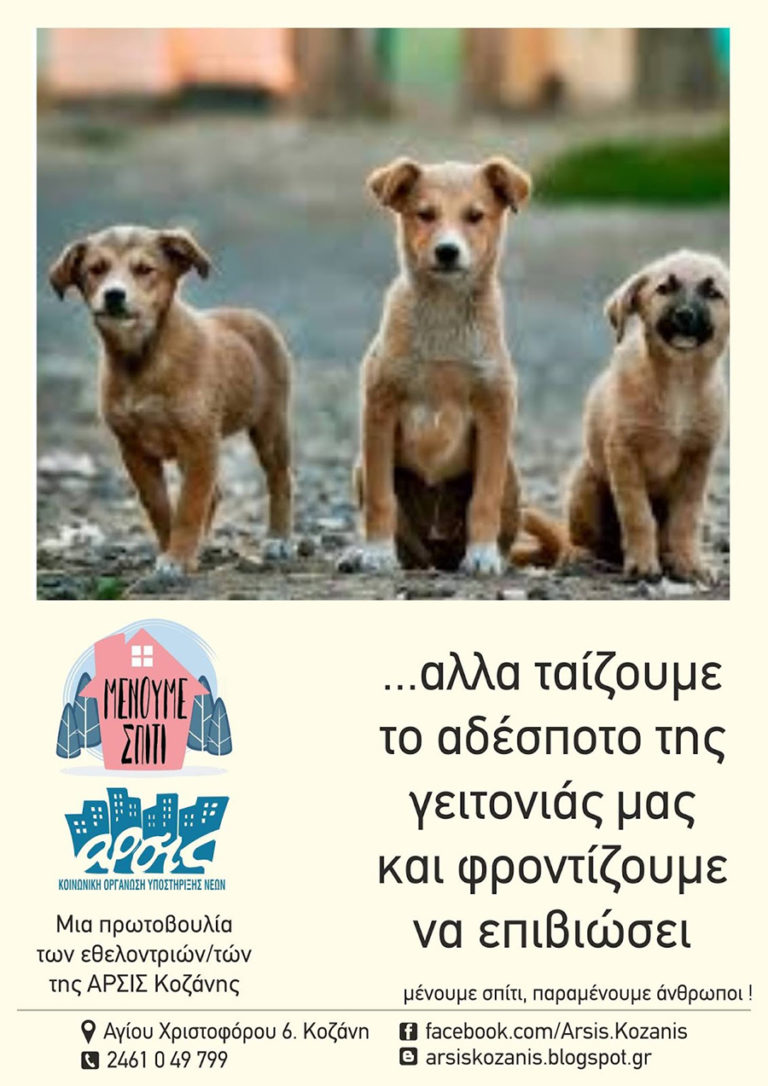 Αδέσποτα αφίσα
